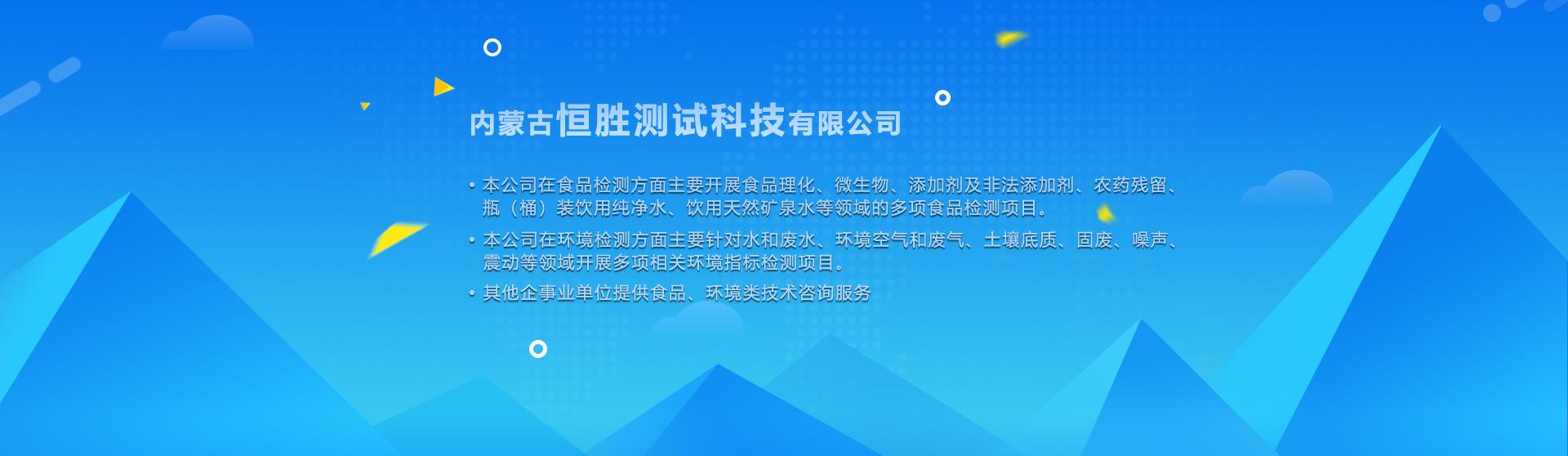内蒙古恒胜测试科技有限公司